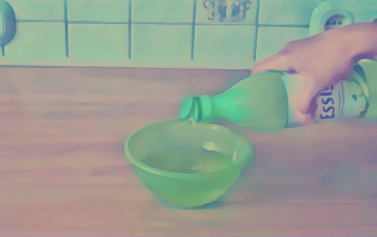 Essig Ledergeruch entfernen